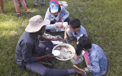 Making A Difference on World Wetlands Day