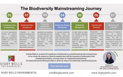 The Biodiversity Mainstreaming Journey