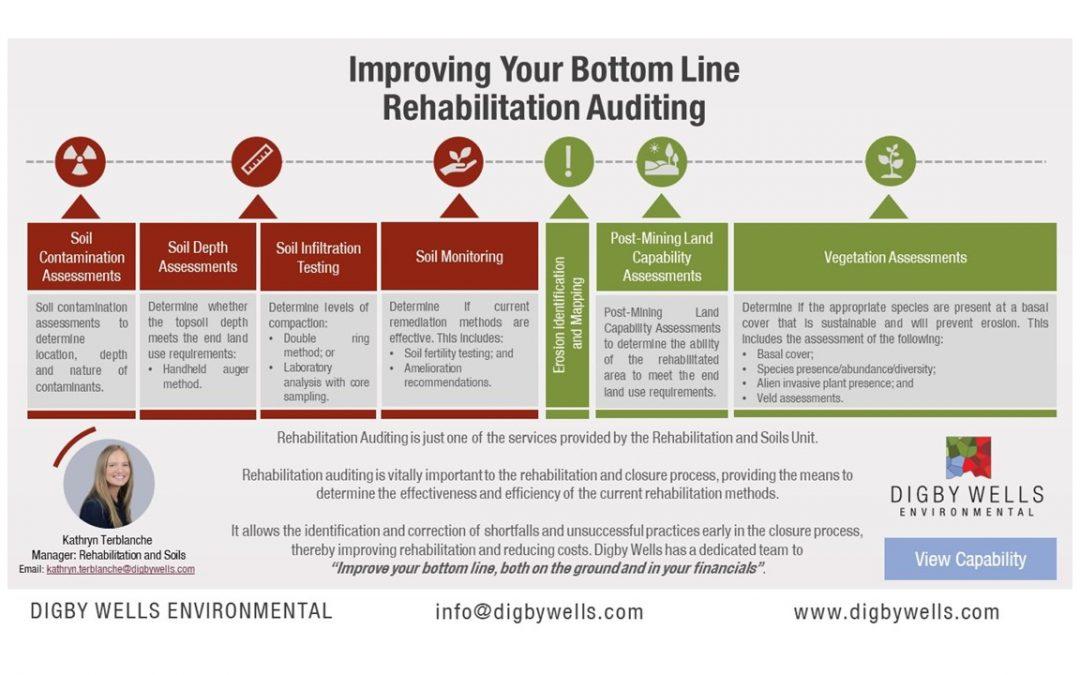 Improving Your Bottom Line: Rehabilitation Auditing